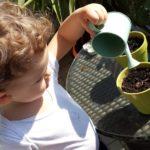 Festa della mamma, un'idea regalo… da coltivare